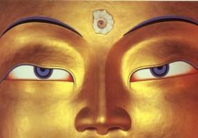 Buddha statue eyes
